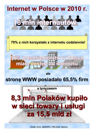 Internauci w Polsce w 2010 r.