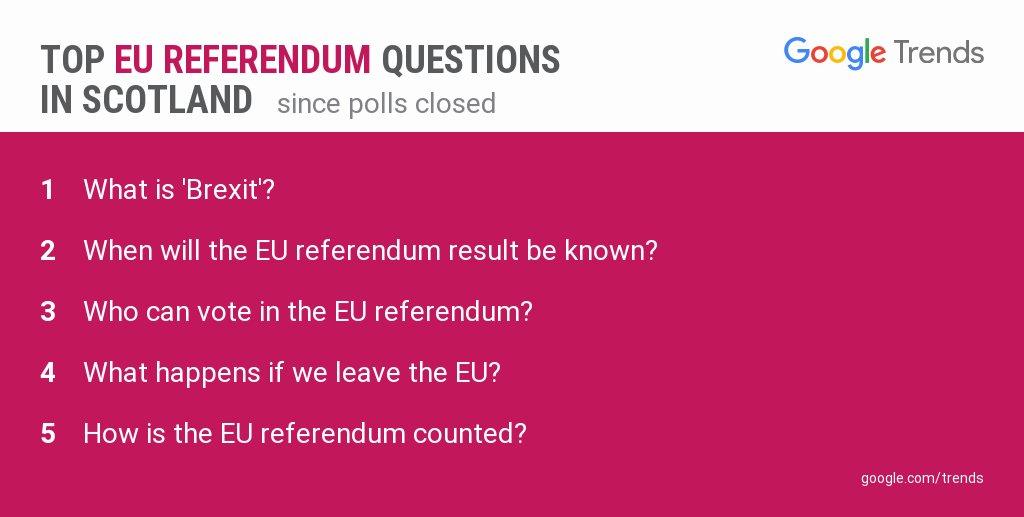 Szkocja - referendum i pytania do Google