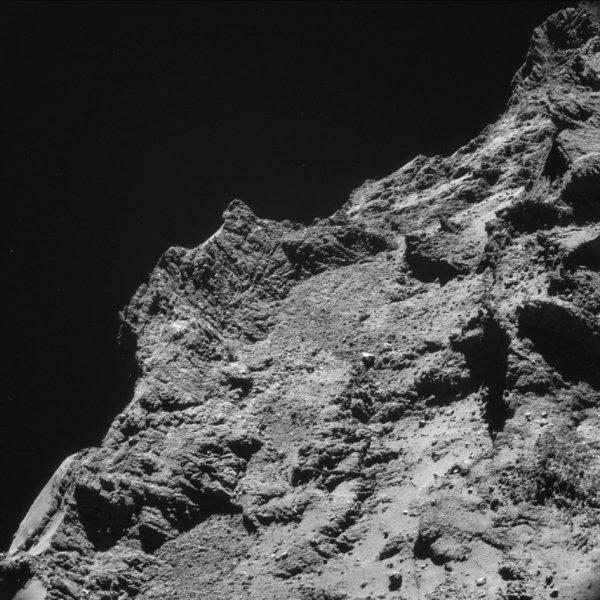 Zdjęcie komety z Rosetty