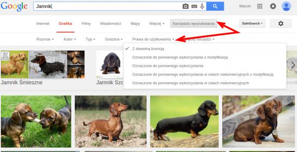 Jamnik w Google