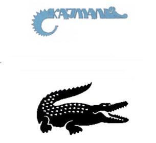 Krokodyl i Kajman