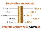 Schemat Programu Afiliacyjnego NetArt