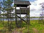 Dziesięciomilionowy plik - platforma obserwacyjna ptactwa wodnego nad jeziorem Lipno