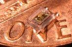 Miniaturowy chip