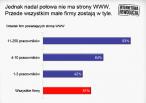 Odsetek polskich firm posiadających strony WWW w 2010 r. źródło: SMG/KRC