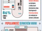 Infografika: Technologie internetowe w Polsce