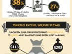 Raport Norton 2013 - infografika