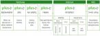 Nowe nazewnictwo ofert Plusa
