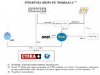 Struktura grupy po transakcji