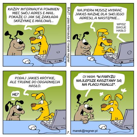 Bezpieczne hasło - komiks