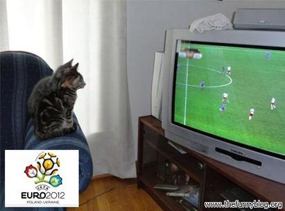 śmieszne zdjęcie, Euro 2012