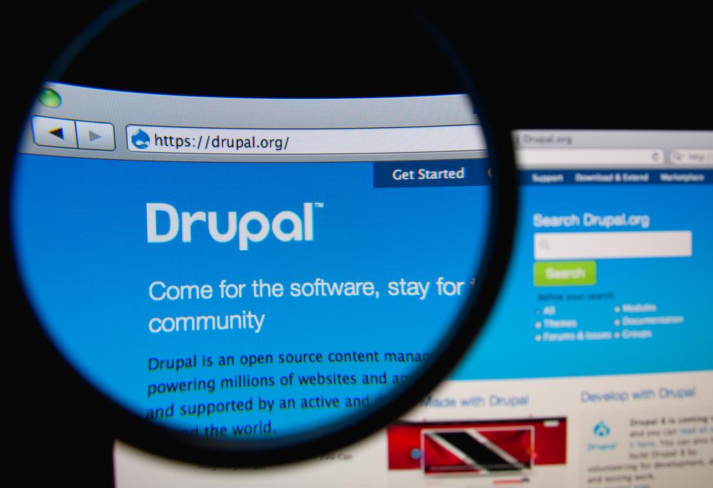 Drupal, fot. Gil C / Shutterstock.com