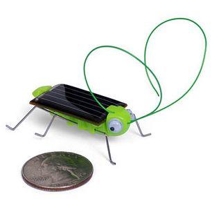 Solar Frightened Grasshopper