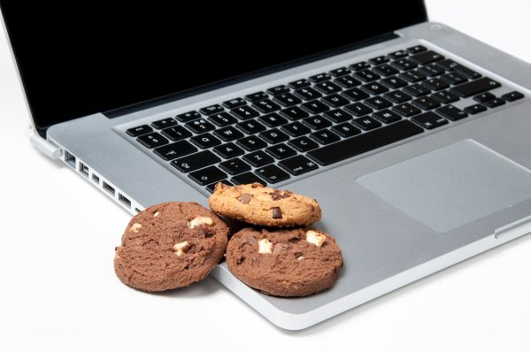 Ciasteczka (ang. cookies)